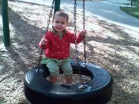 amelia tire swing